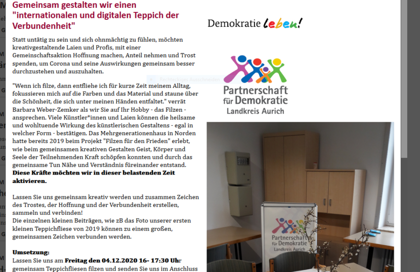 Die Projekt-Homepage, Seite 1..